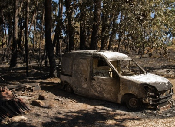¿Qué hacer ante un incendio forestal?