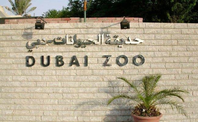 16 Best Attractions Of Dubai