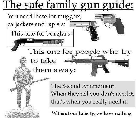 Firearm Guide For American Families