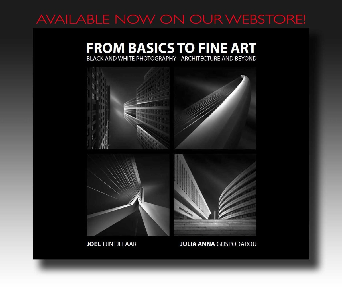 From Basics To Fine Art - Black and White Photography - Architecture and Beyond - The Book