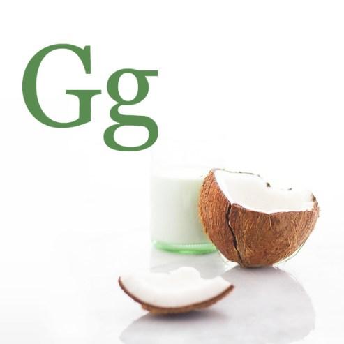 G-Glossary