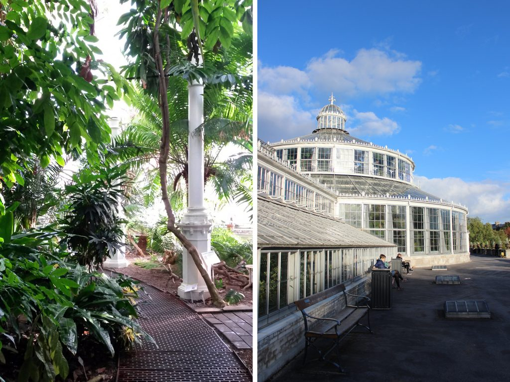 Garten Der Schmetterlinge Hamburg Unterwegs In Kopenhagen Palmehuset And Botanisk Have
