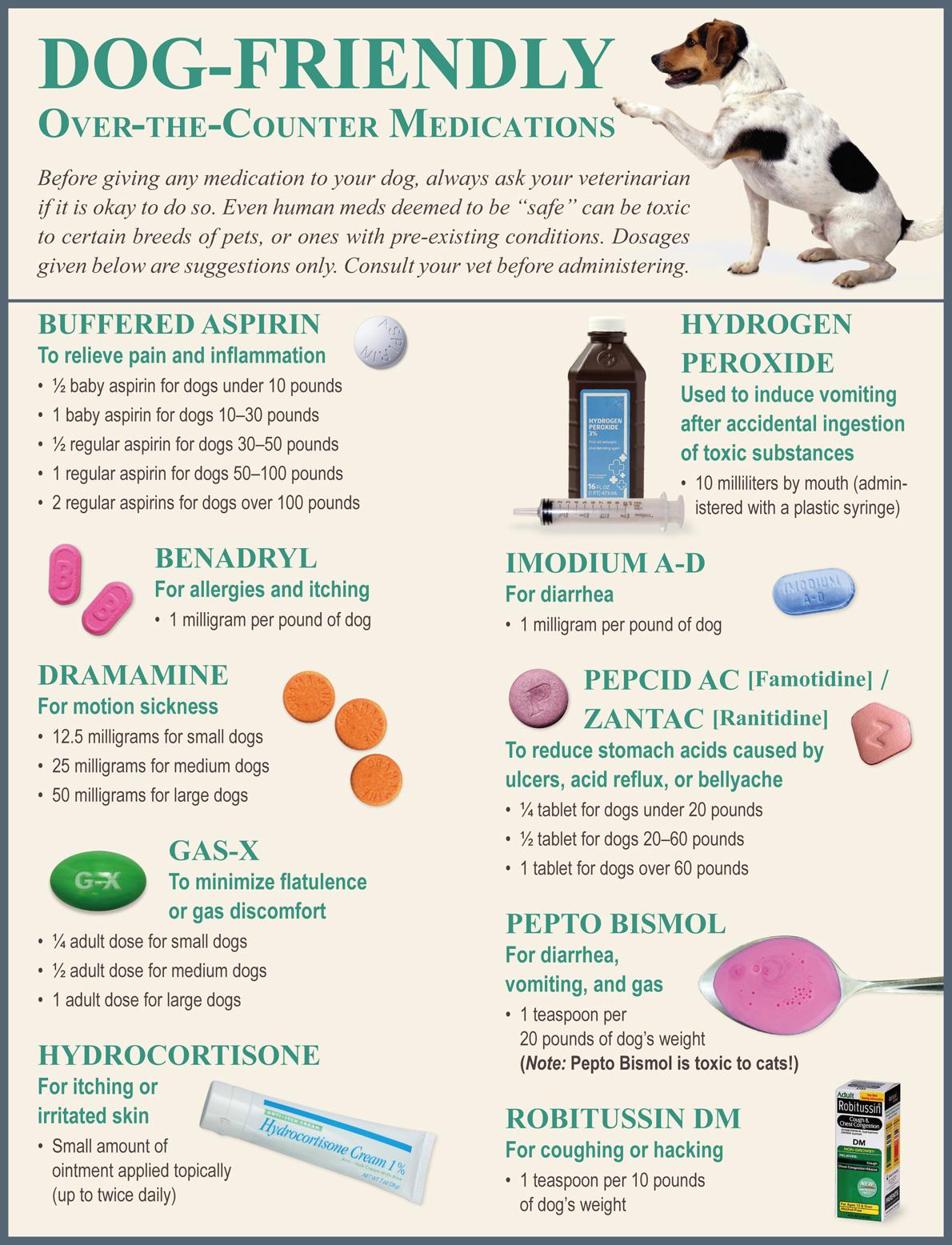 Astounding Safe Dog Medications Dog Medications Archives Dog Itching No Fleas Benadryl Dog Itchy Benadryl bark post Dog Itching Benadryl