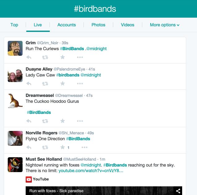 birdbands-twitter-hashtag-live-stream