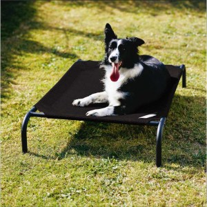 Coolaroo Elevated Knitted Fabric Pet Bed in Medium Black