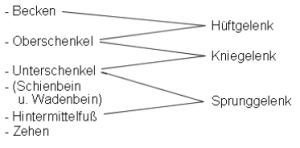 gelenk-tabelle4