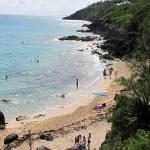 Bermudes-Wendy-Piersall