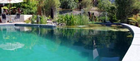 Eco friendly swimming pools nz design auckland wellington christchurch natural above ground for Above ground swimming pools nz