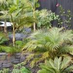 Peter Fry Subtropical garden landscape auckland