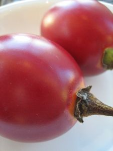 546513_tamarillo_red_fruit