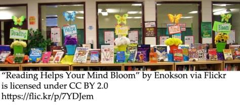 classroom bilingual lending library