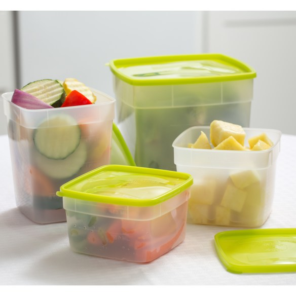 These heavy-duty containers are made of durable plastic to lock in flavor and freshness and prevent damaging freezer burn at very low temperatures. At Lehmans.com.