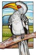 hornbill