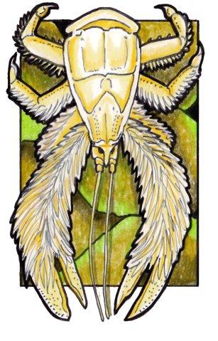 yeticrab