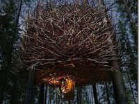 The-Birds-Nest-Inrednin-Gsgruppen-1_thumb[1]