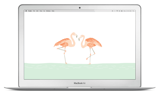 macbook-air-flamingos