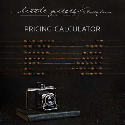 Pricing Calculator for Photographers - Brisbane Newborn Baby - product pricing calculator