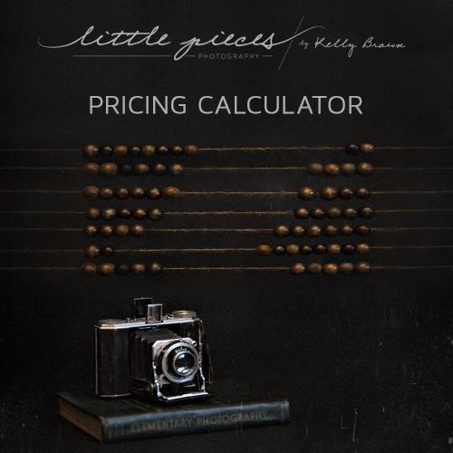 Pricing Calculator for Photographers - Brisbane Newborn Baby