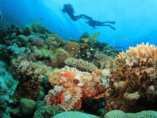 mar rosso: quale località scegliere? lol.travel blog - Soggiorno Mar Rosso 2