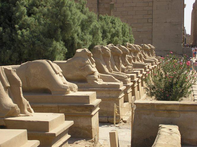 Viale delle sfingi a Luxor