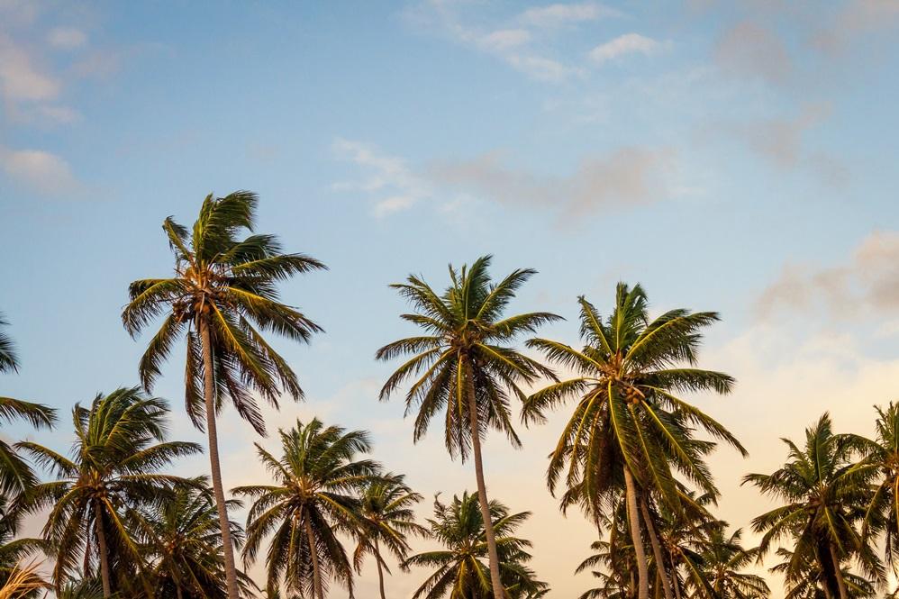 Caraibi - Fonte Unsplash Foto di Thomas Lefebvre