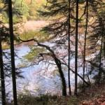 Vue de la Laïta de la forêt de Carnoët