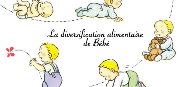 La diversification alimentaire de b b quel aliment for Mely marmelade