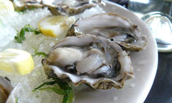 Peljesac oysters