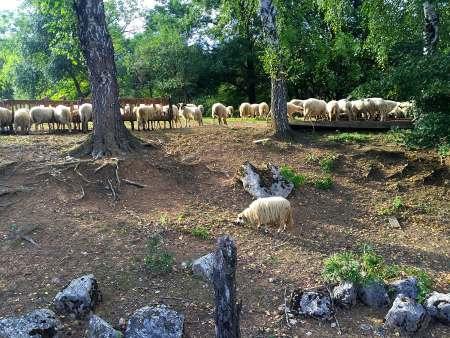 Velebit National Park