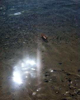 Αγιος Νικόλαος, Γαργαδόρος, ρύπανσης θάλασας από λύματα - gargadoros_20160919