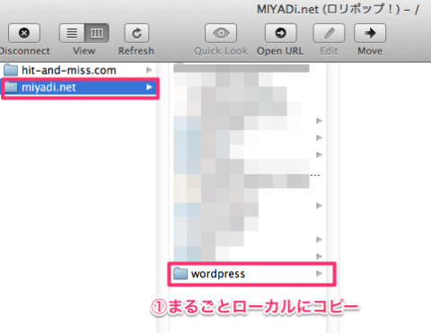 MIYADi.net__ロリポップ!__-__-18
