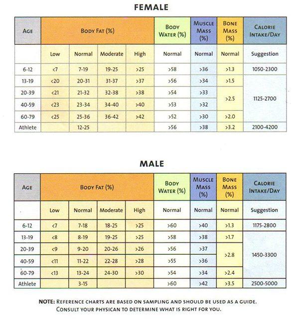 Healthy Weight Chart For Women Chart Jpg Pixels Weight Loss