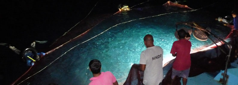image of Maldives tuna fisherman catching bait at night