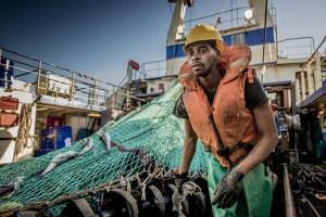 South African hake trawl fishery