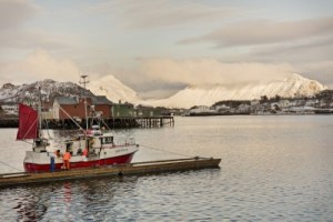 Cod fishery in the Norwegian sea