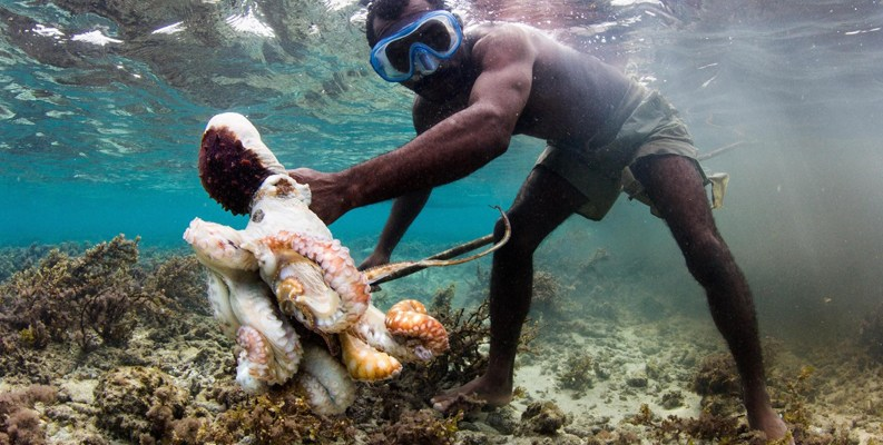 Male Madagascan octopus fisher underwater wearing goggles with octopus and spear