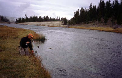 Fly Fishing on Spring Creeks