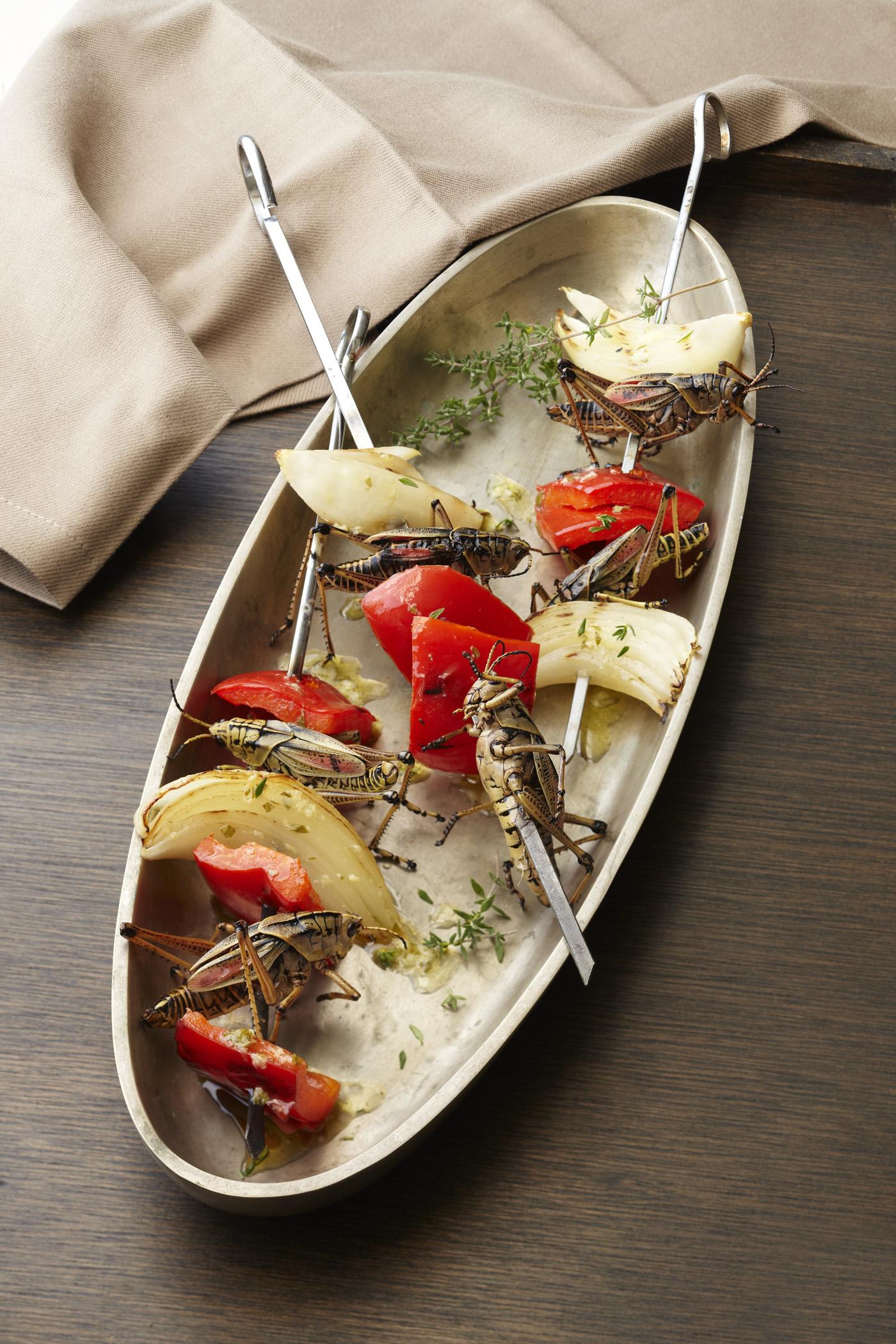 Fullsize Of What Do Crickets Eat