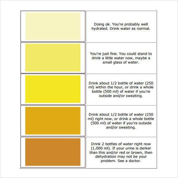 Urine Color Chart Dehydration Urine Color Chart At Work - sample urine color chart