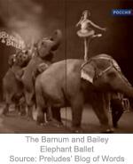 barnum-and-bailey