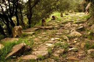 via-romana capsacosta