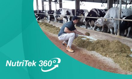 NutriTek 360º: Agropecuária Fockink