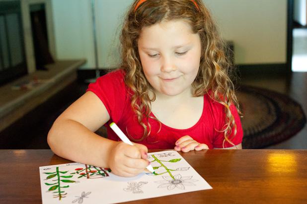 Made by Joel Garden Coloring Sheet Kids Photo 2