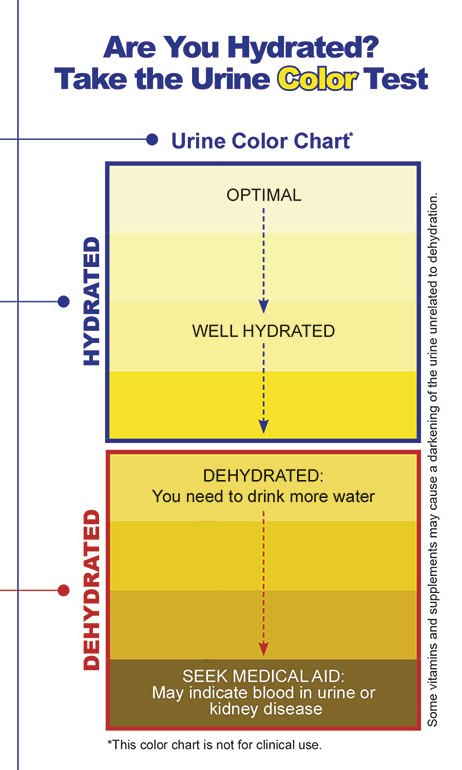 Yes, Your Urine Color DOES Have Meaning