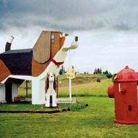 A Night Less Ordinary: Dog Bark Park Inn