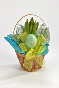 Royer's Kids Club hyacinth basket