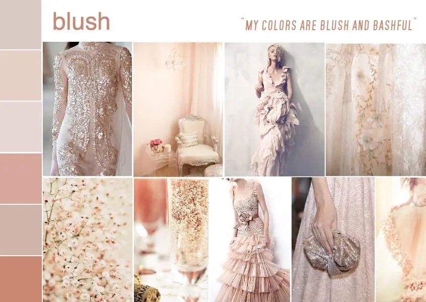 color blush mood board 1