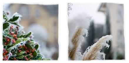 Winter_Season_www.SIGNUM7.com