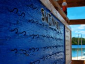 swim-board