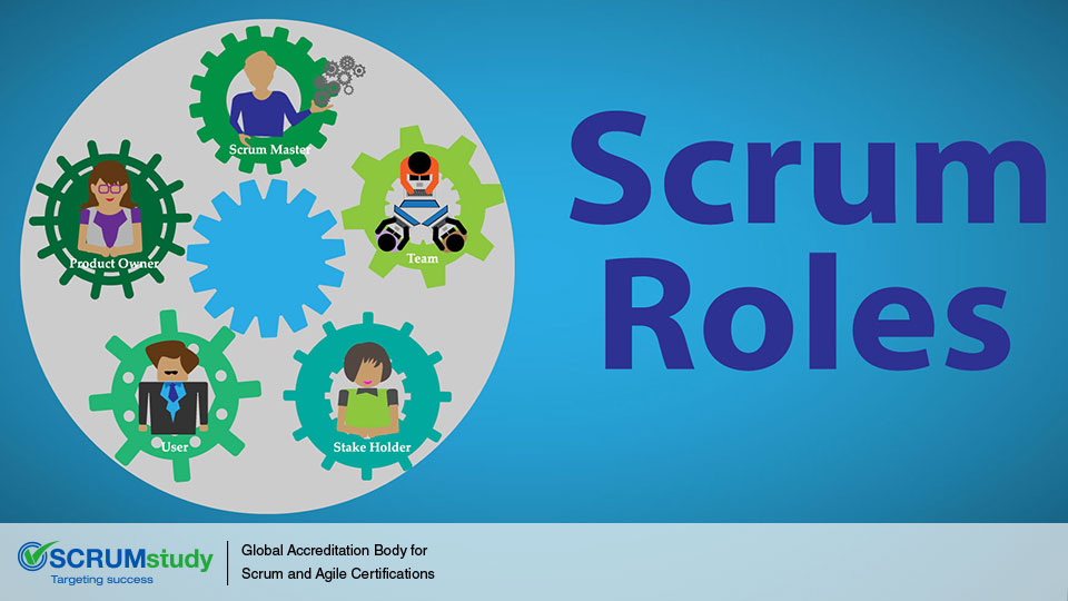 Roles and Responsibilities in Scrum SCRUMstudy Blog